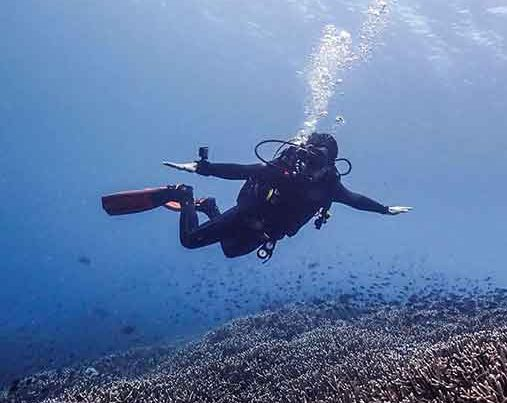 Diver drifting over the reef